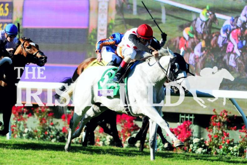 World Approval too good for European raiding party in Breeders' Cup Mile