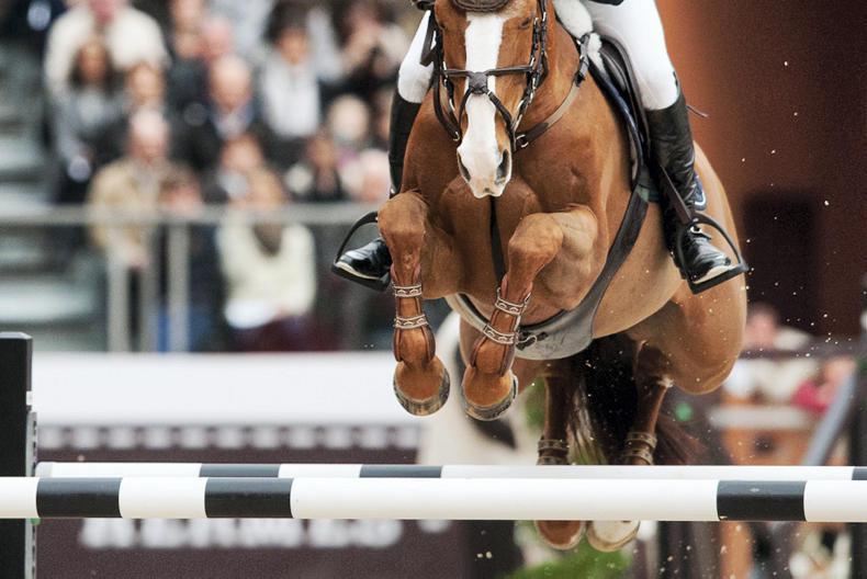 INTERNATIONAL: Irish riders placed in Lyon