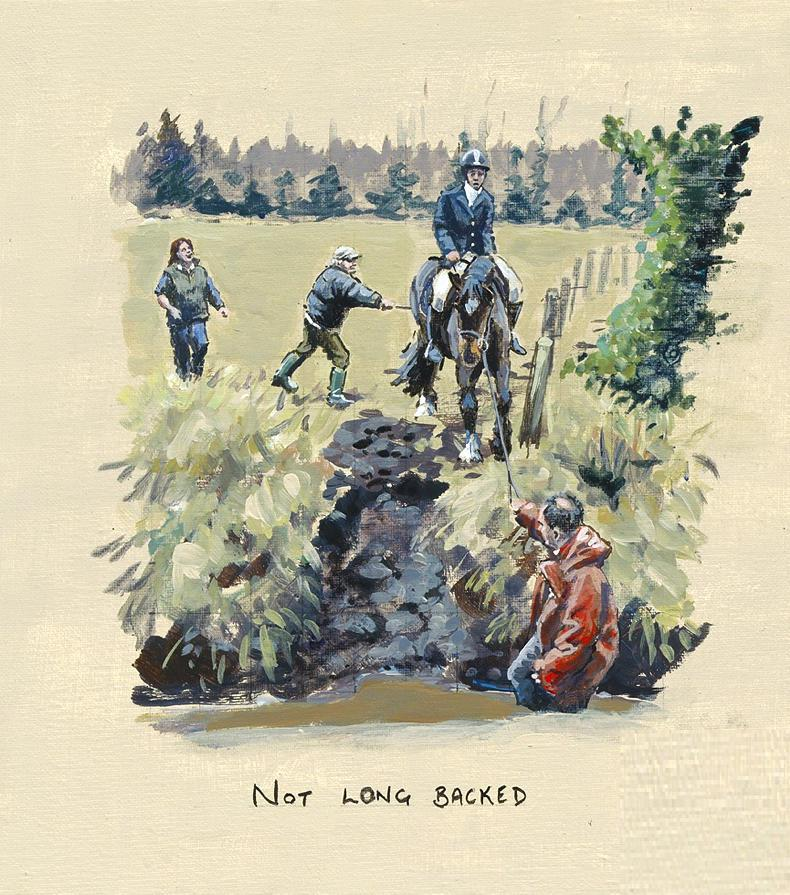 HUNTING SKETCH:  Not Long Backed