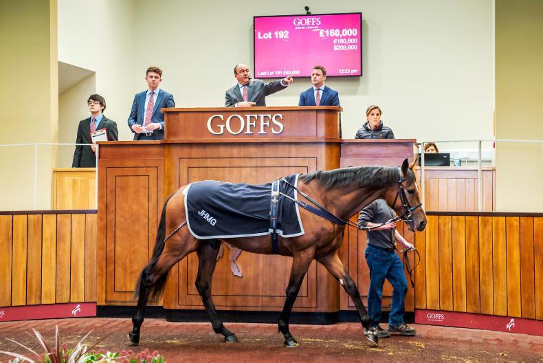 John Gosden-trained Joshua Reynolds tops Autumn Sale at £160,000
