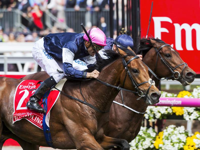 PEDIGREE NOTES: Rekindling the 20th Group 1 winner for High Chaparral