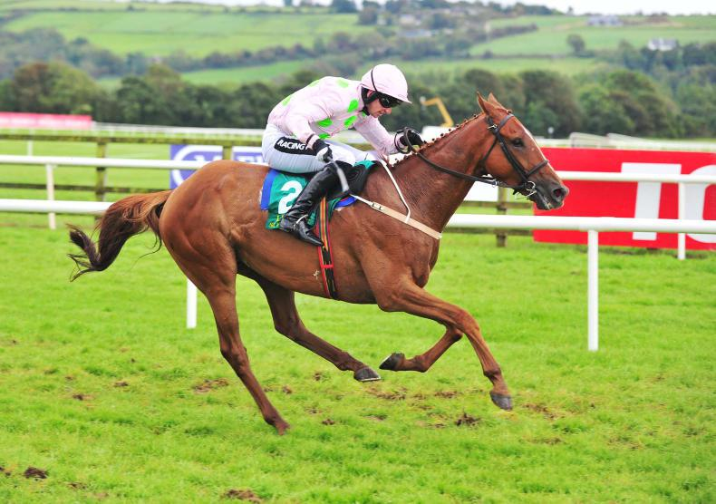 Willie Mullins at the double at Thurles as Brahma Bull wins again
