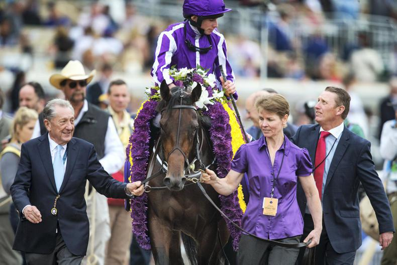 Mendelssohn in tune for Ballydoyle