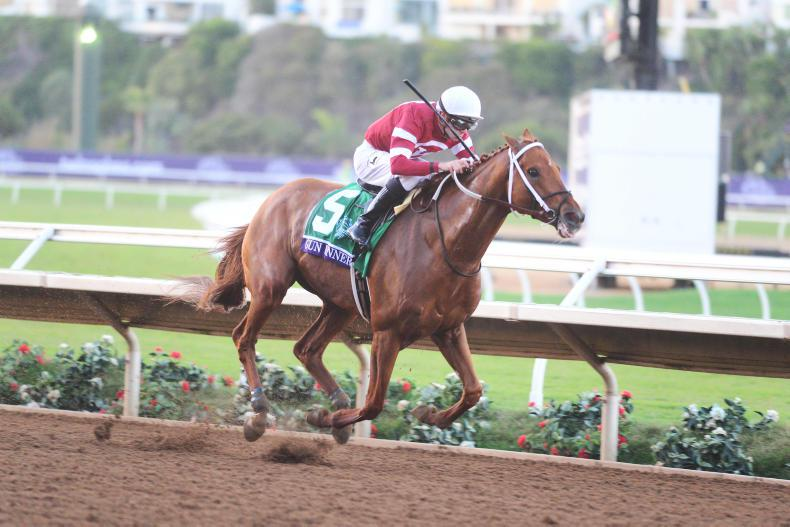 BREEDERS' CUP: Hard to top the Gun Runner show
