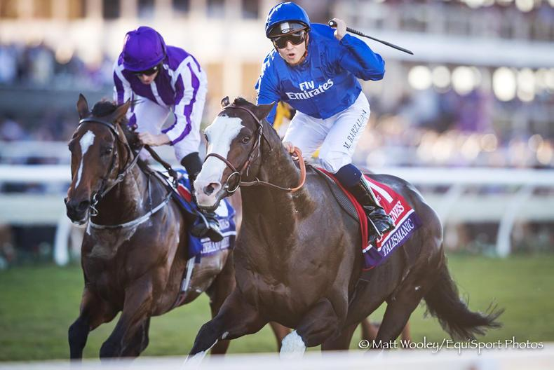BREEDERS' CUP: Talismanic on top in Turf