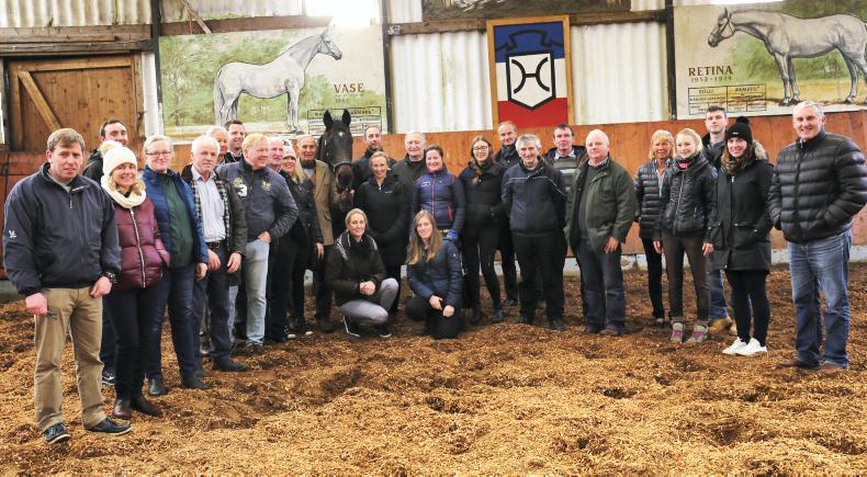 BREEDING FEATURE:   Holstein horsepower - glimpse of future stars