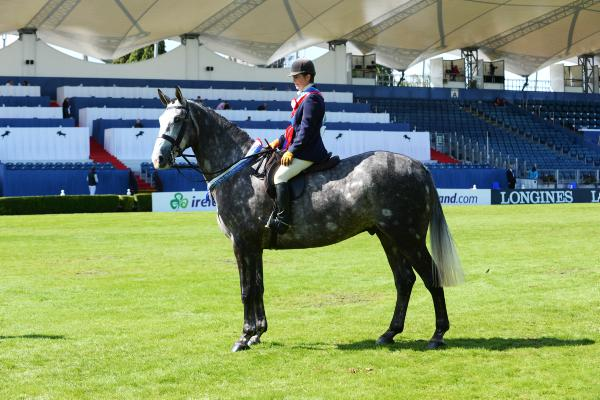 Bloomfield Excelsior crowned supreme champion hunter