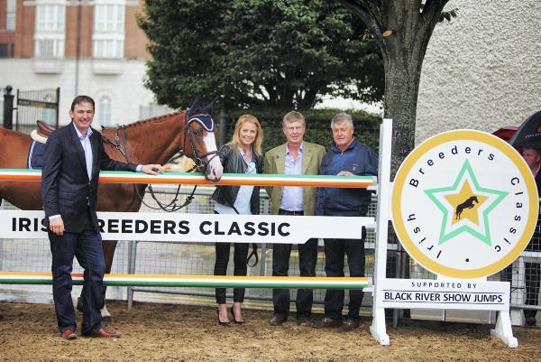 Irish Breeders Classic to draw buyers