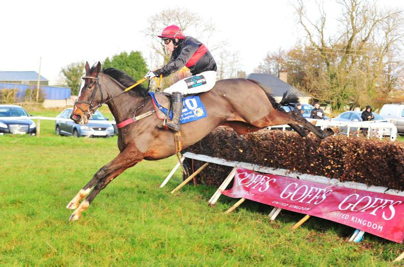 DROMAHANE SUNDAY - DUHALLOW FOXHOUNDS:  Queens Cave heads stellar show