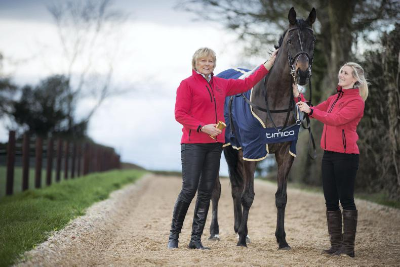Gold Cup hero Sizing John heads seven contenders for Betfair Chase honours