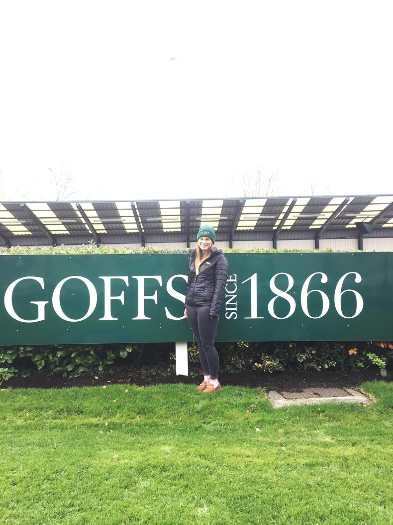 ITBA NEXT GENERATION: Goffs placement changed my luck in the sales ring