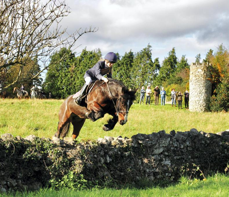 HUNTING: Tradition at Bansha House