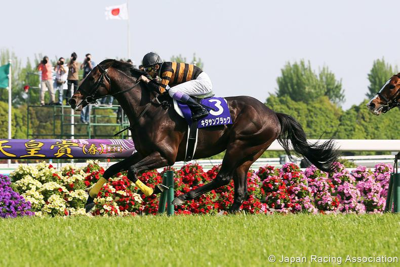 JAPAN CUP: Kitasan for grand finale