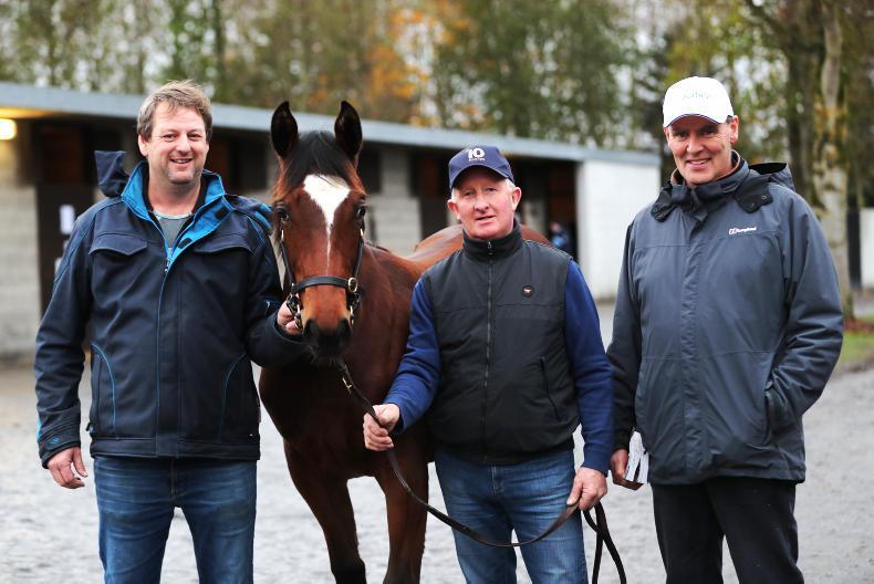 Fingers crossed for weekend foal trade