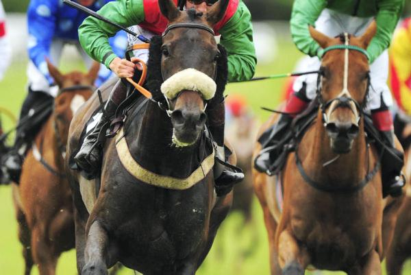 The number of races is a major issue for all jockeys