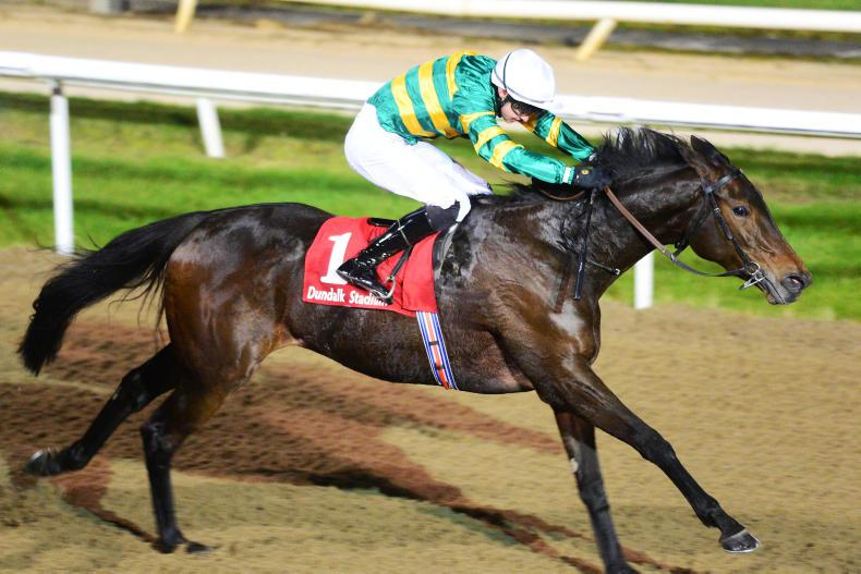 DUNDALK FRIDAY: Clear Skies in winning form