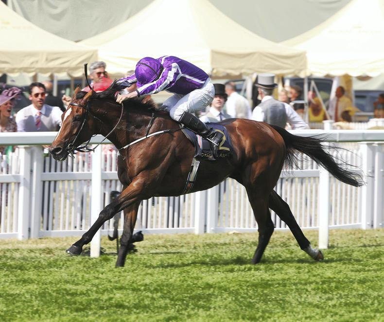 SIMON ROWLANDS: Highland Reel for the Vase