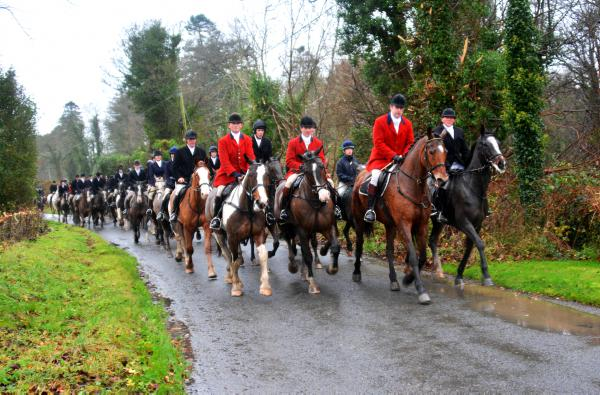 Meath Foxhounds are a class pack