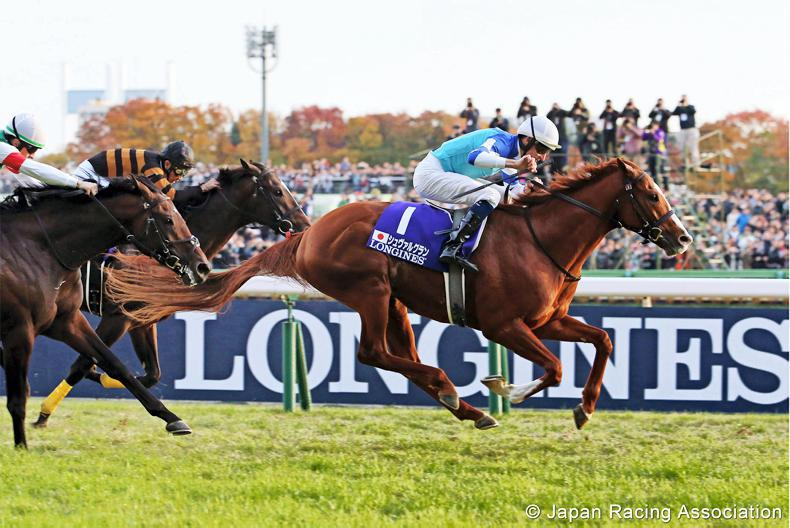 JAPAN CUP: Bowman takes a bow on Cheval Grand