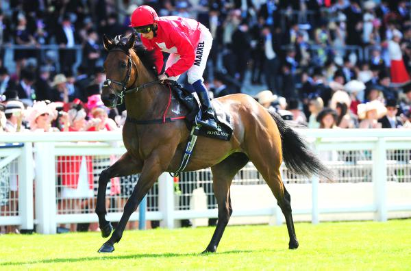 Gordon Lord Byron to bounce back