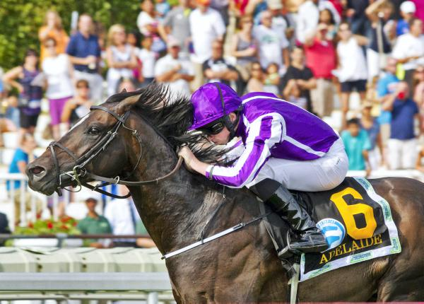 Adelaide storms to Secretariat success
