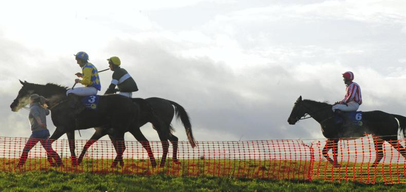 POINT-TO-POINT PICTURE DESK: Weekend winners