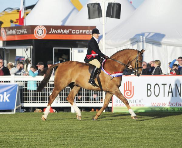Royal Ulster Agricultural Society show bound for Balmoral