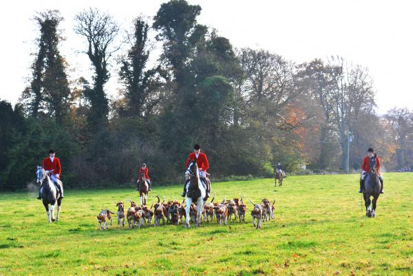 Louth Foxhounds: Work rate in Tenure
