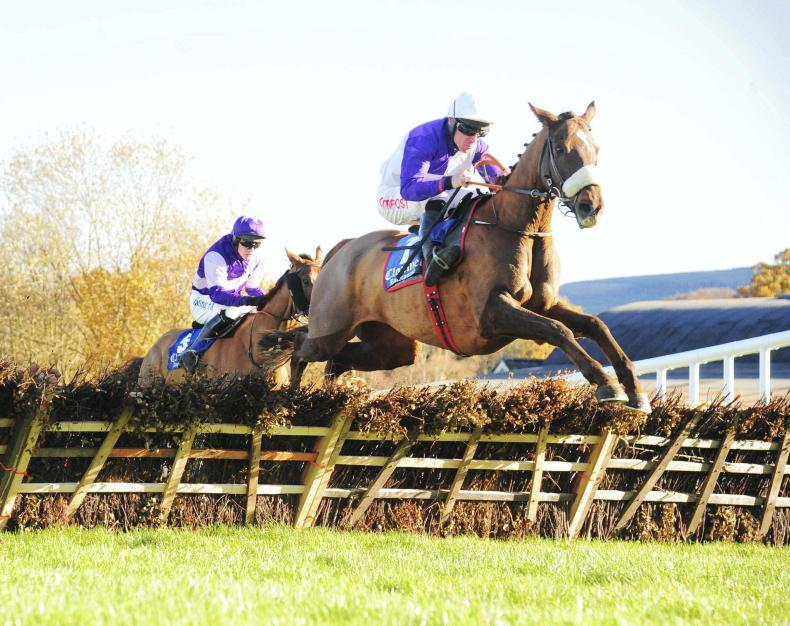 FAIRYHOUSE SUNDAY: Veinard could come home fast and late