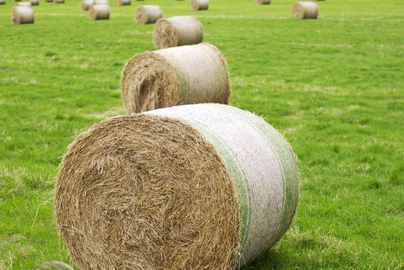 NEWS:  Act now to assess hay needs