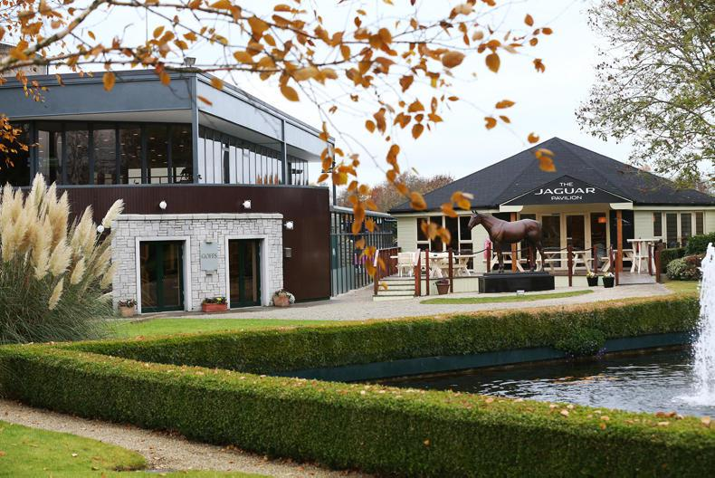 PONY TALES:  Expo set for Goffs