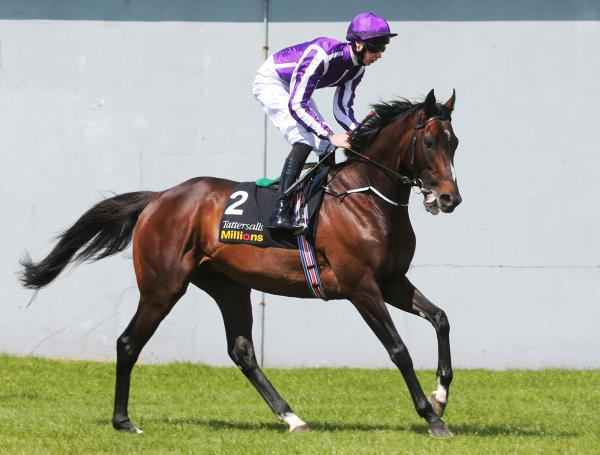 Derby winner Camelot starts stud career