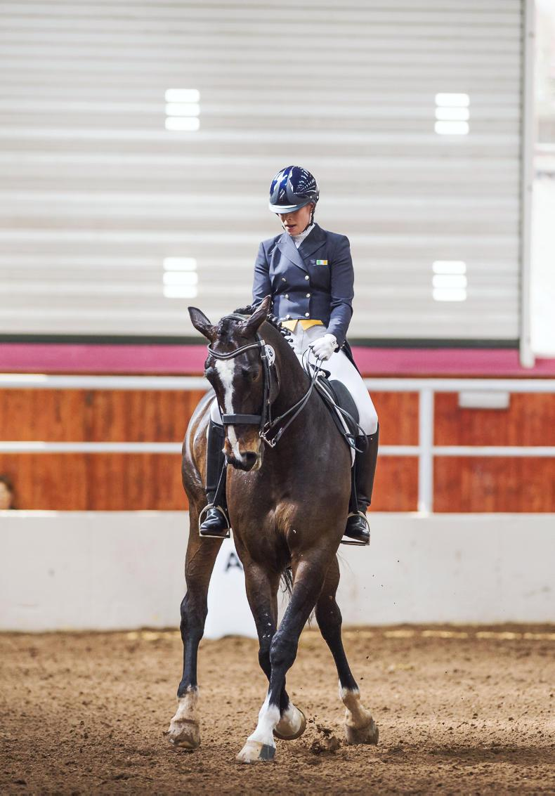 HORSE SENSE: Mastering the art of dressage