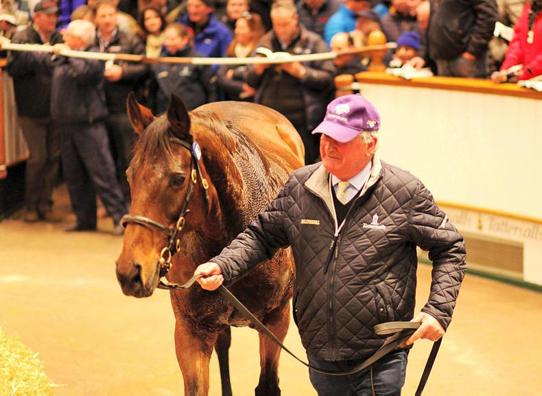 TATTERSALLS DECEMBER MARE SALE: Sadness at the end of a glorious era