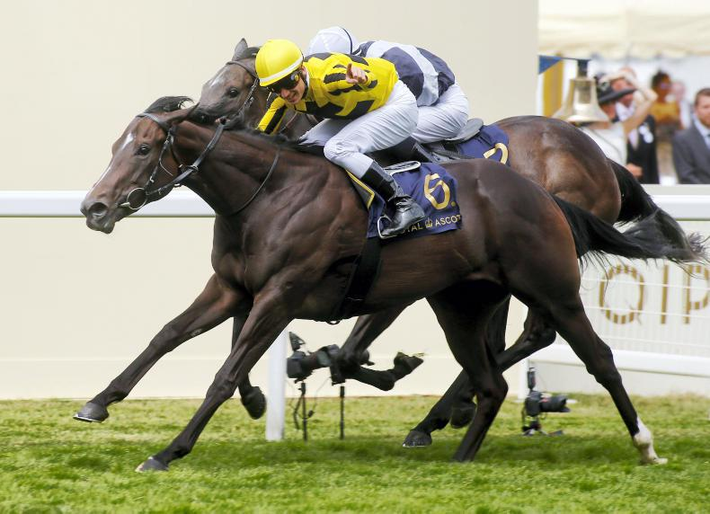 TATTERSALLS DECEMBER MARE SALE: Marnanes are in a Different League