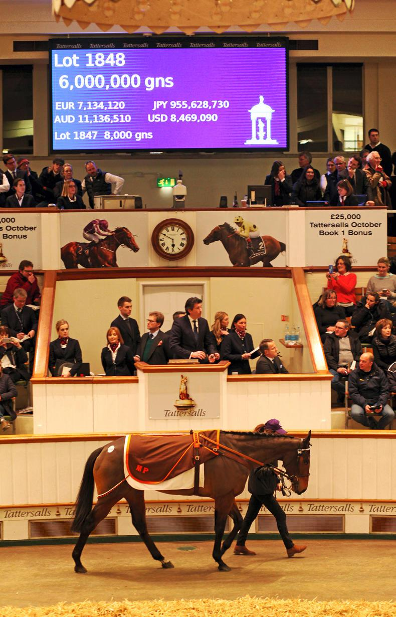 TATTERSALLS DECEMBER MARE SALE: Marsha carves her name in Tattersalls' history