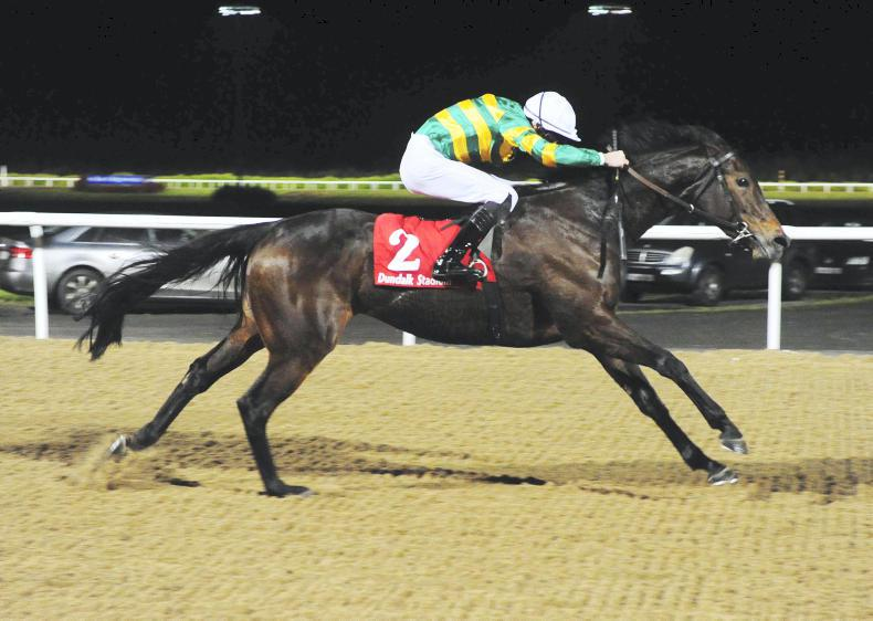 DUNDALK FRIDAY: Clear Skies takes the feature
