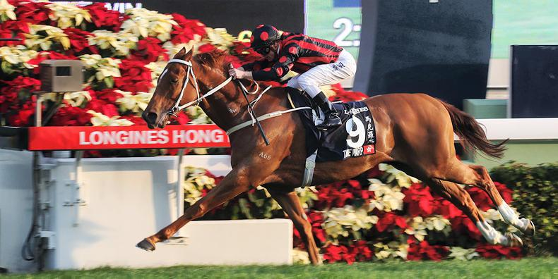 VIDEO: HONG KONG: Grand slam for Purton as Time Warp wins Longines Hong Kong Cup