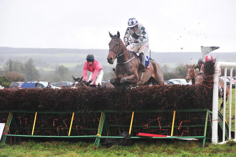 BOULTA SUNDAY UNITED HUNT FOXHOUNDS: Press Conference star performance