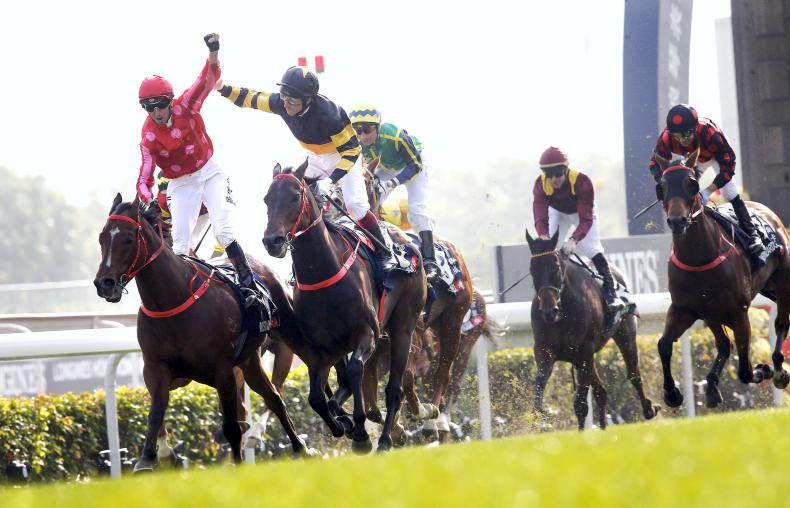 HONG KONG: Stunning supreme in the Sprint