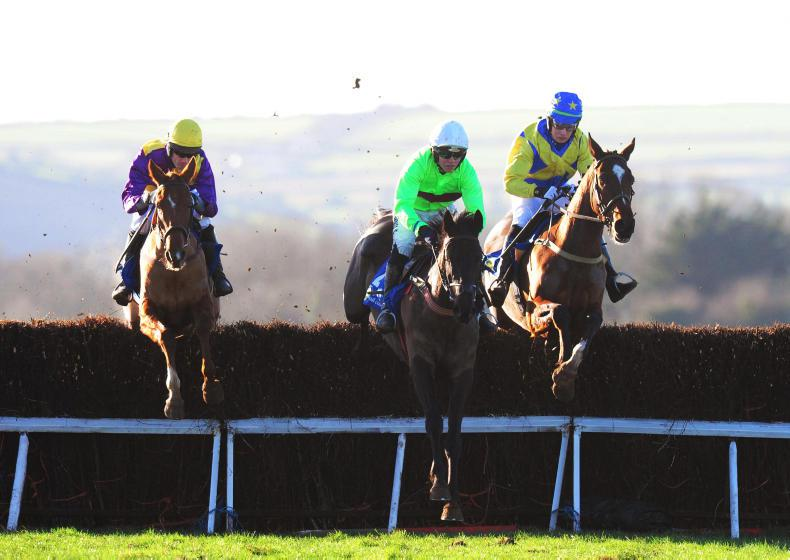 MARGIE MCLOONE: Irish-breds steal the show at Alnwick