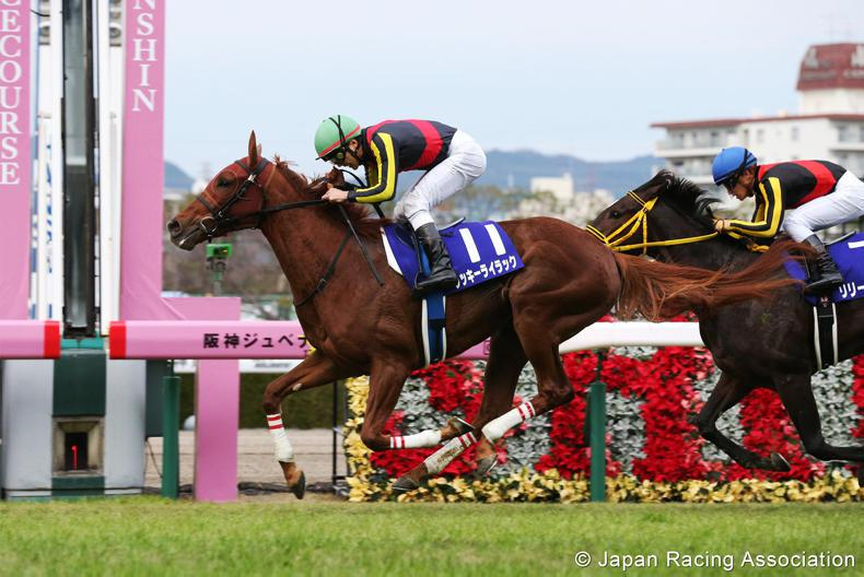 JAPAN: Lilac gets Lucky for Orfevre