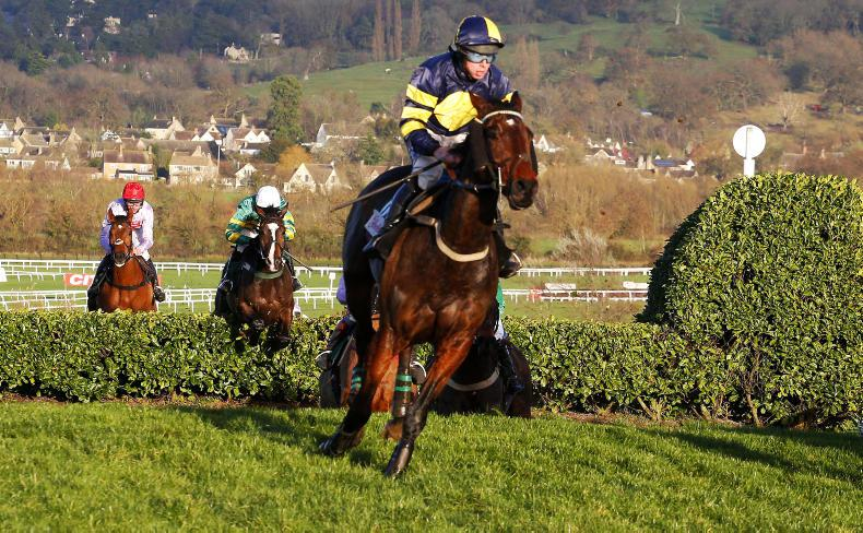 More Of That takes Cross Country Chase challenge at Cheltenham