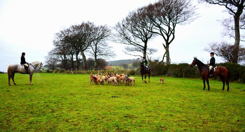 HUNTING: Comradery in Co Wicklow
