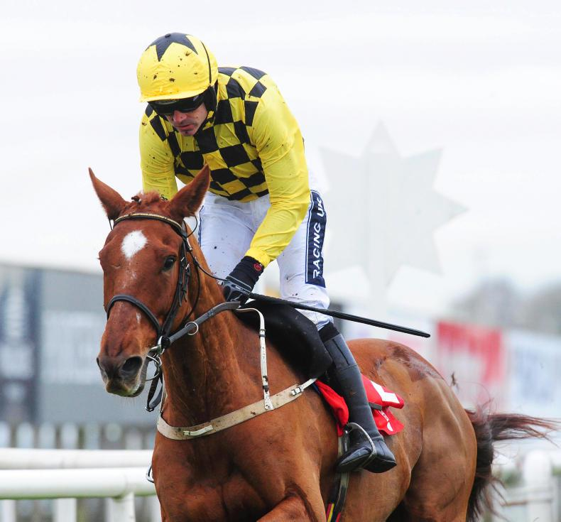Melon aiming high in the International at Cheltenham
