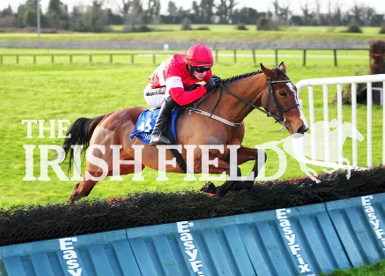 Stormy Ireland bolts up for Willie and Danny Mullins at Fairyhouse