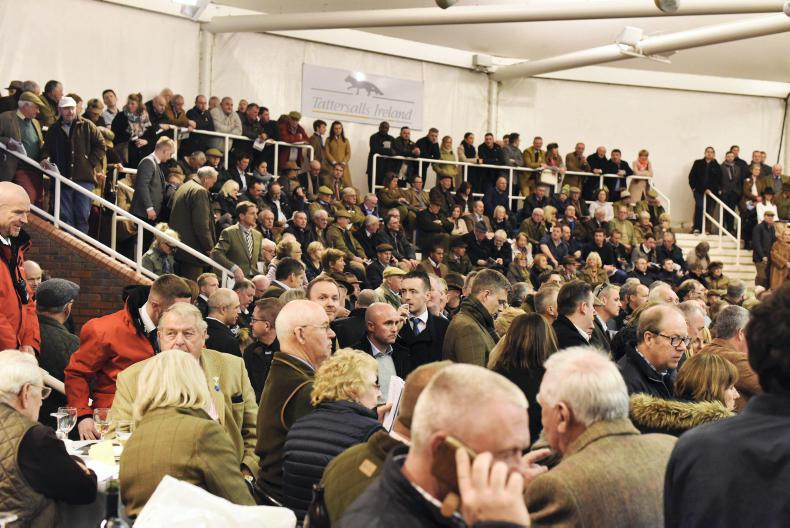 £400,000 paid for point-to-point winner at Cheltenham Sale