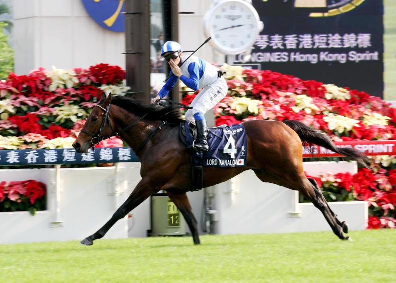 JAPAN REVIEW 2017: Freshman sires - quality versus quantity