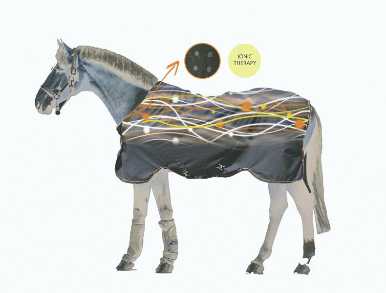 What you need to know about Horseware's Rambo Ionic range