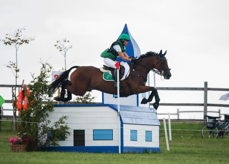 REVIEW 2017 INTERNATIONAL EVENTING:  Ennis seventh at European Championships